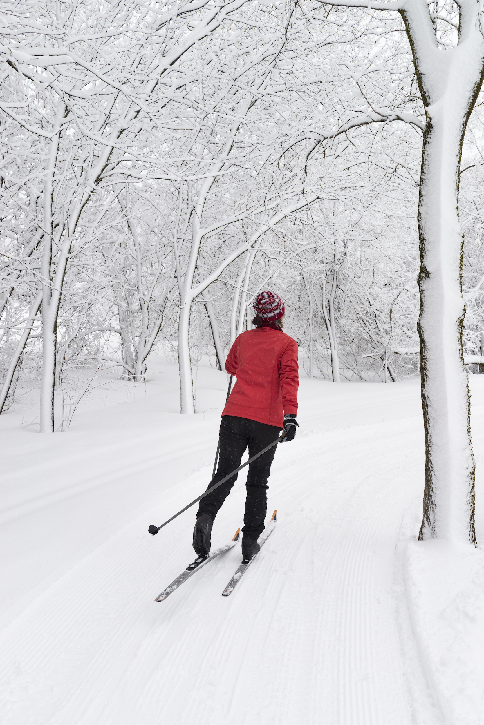 Cross Country Skiing at Blue Mountain